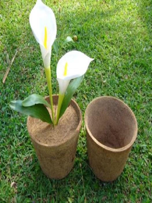 Coir Pot) S L  Natural Fibre Products Inc
